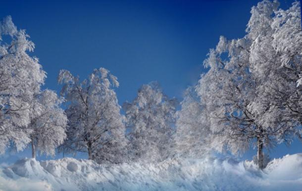 Weihnachtsgedichte Von Rilke.Die Hohen Tannen Von Rainer Marie Rilke
